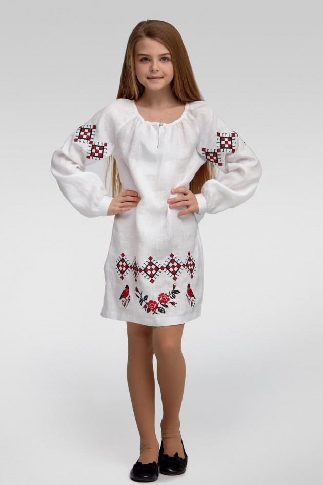 Вишита сукня вишиванка для дівчинки White 4